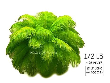 Plumas de Avestruz, 1/2 lb 17 - 19