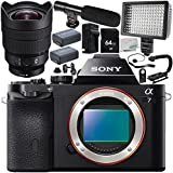 Sony Alpha a7 Mirrorless Digital Camera with Sony FE 12-24mm f/4 G Lens 18PC Accessory Bundle – Includes 64GB SD Memory Card + 2x Replacement Batteries + MORE