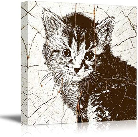 Square Fluffy Kittenon Vintage Wood Effect Background