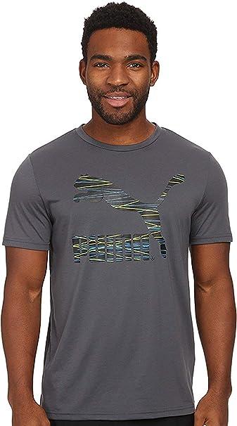 ddb34fd1 PUMA Men's Performance T-Shirt