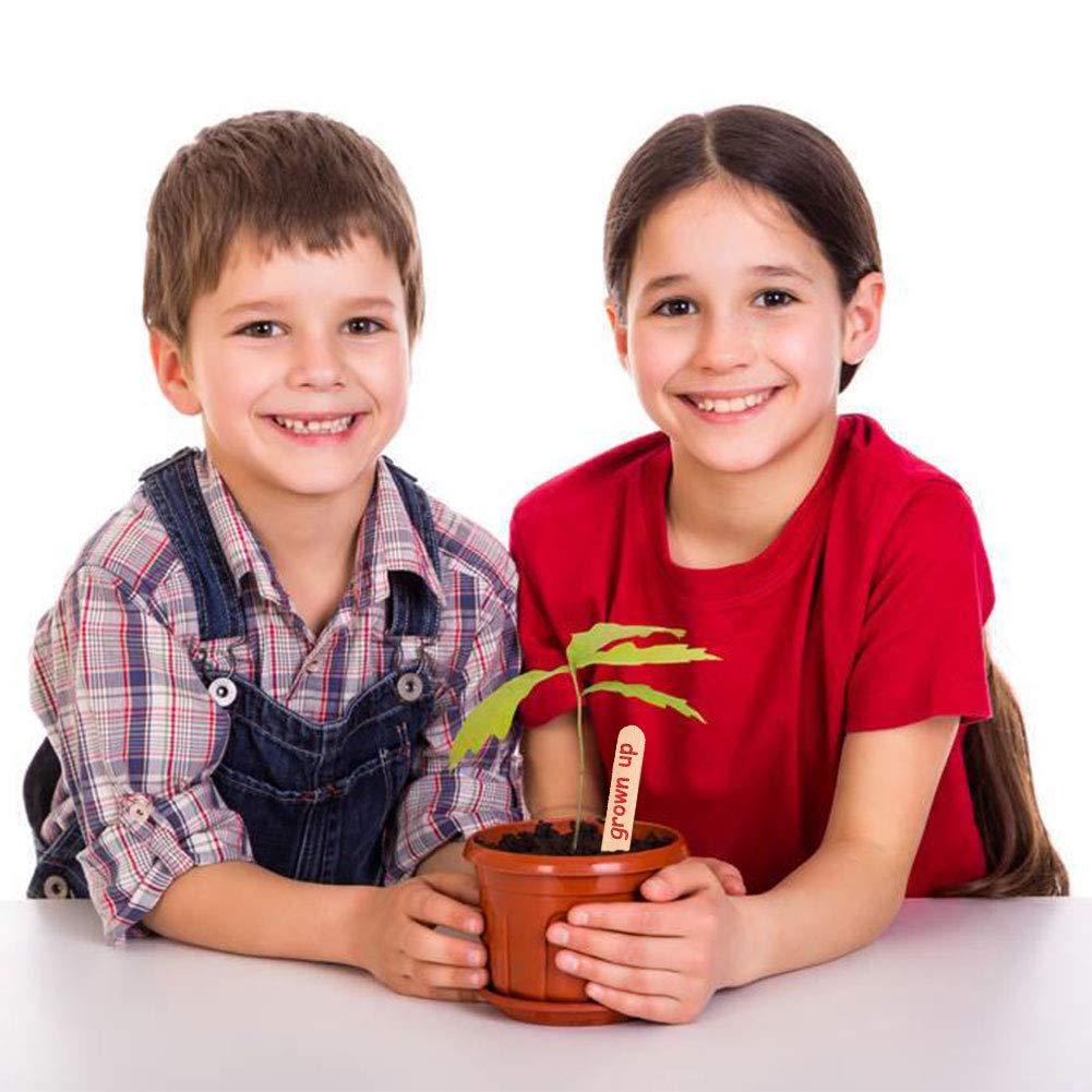 Xiangmall 100 Piezas Palo de Madera Etiqueta de Planta con 2 Piezas Marca Pluma para Planta Manualidades Hechas a Mano
