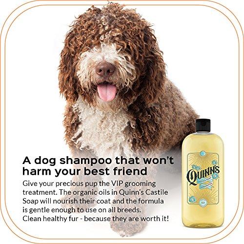 Quinn's Pure Castile Organic Liquid Soap, Unscented, 32 oz by Quinn's (Image #4)