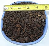 coMarket New Zealand Orchiata Bark Small