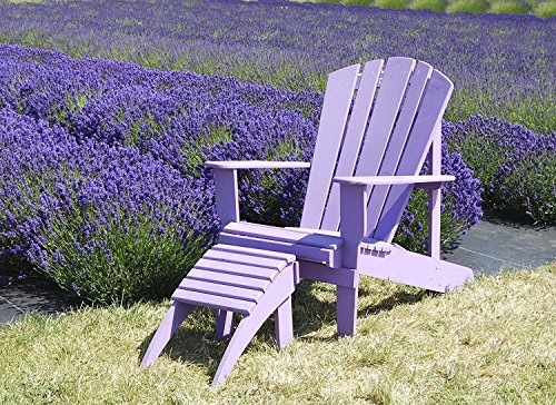 (Easy Garden Roll Out Flowers Lavender Gardening kit - 10-Foot by 10-inch - by Garden Innovations)