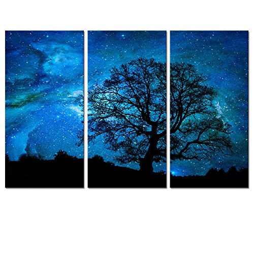 Night Canvas Art (Starry Space Canvas Wall Art,Landscape Home Decor,Nature Landscape Picture Art,Canvas Prints,Autumn Forest Wall Decor,Wall Decoration (Starry Night))