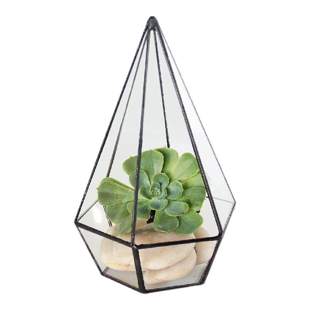 jinxin Geometric Flower Glass Hanging Polygonal Living Flower Manual DIY Container Hollow Transparent Glass Frame (Size : B)
