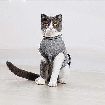 Rstant Recovery Suit - Ropa para Gatos y Perros, Suave y elástica ...