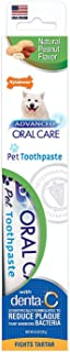 product image for Nylabone Advanced Oral Care Natural Peanut Flavored Dog Toothpaste
