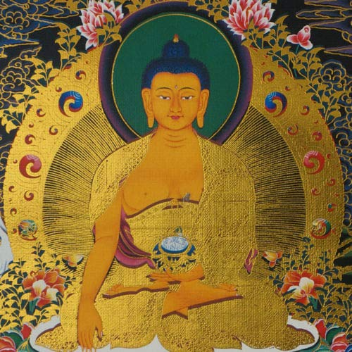 TranShop 14 Silk BROCADED Blessed Golden Wood Scroll Tibetan THANGKA Buddha SHAKYAMUNI = TM