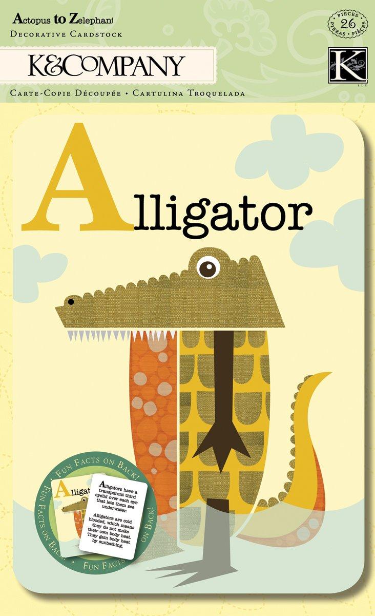 Amazon.com: K&Company Actopus to Zelephant Alphabet Cards, 5 by 7 ...