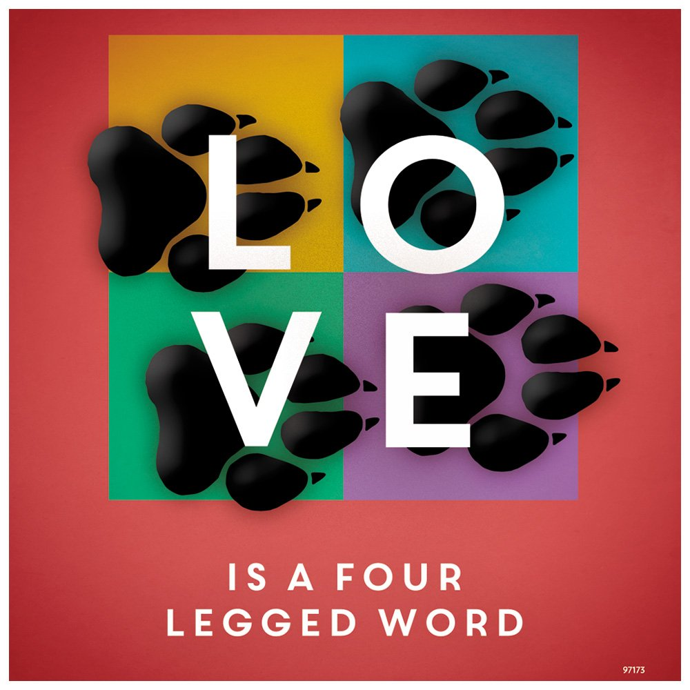 Tree-Free Greetings 97173 Four Legged Word Themed Pet Lover Art Premium Refrigerator Magnet 3.5 by 3.5