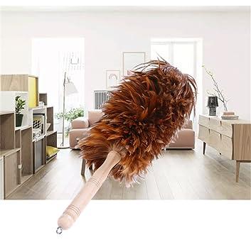 Limpieza de plumas, con mango de madera maciza y plumas de ...