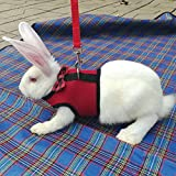 Pinkdose® Red, L: Mesh Dog Harness with Leash for Hamster Rabbits Bunny Ferret Guinea Small Animal Pets Vest Lead Pet Supplies Puppy Chest Strap