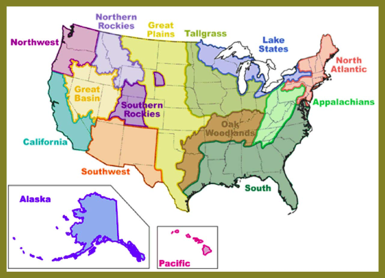 Amazon.com: Laminated Map - Northwest Fire Science ...