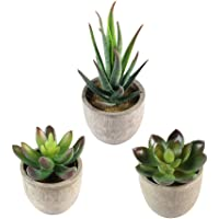 NUOLUX 3pcs Decorative Faux Succulent Artificial Succulent Fake Simulation Plants with Pots