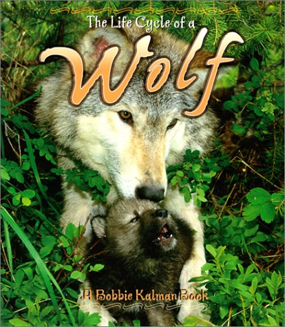 Wolf (Life Cycle of A...(Paperback))