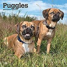 Puggles 2019 Calendar