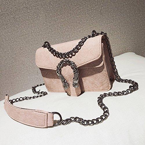 Super Fire Ins Zhangjia Small Handbag, Hot Women Shoulder Bag Single Chain Shoulder Chic, Black Pink