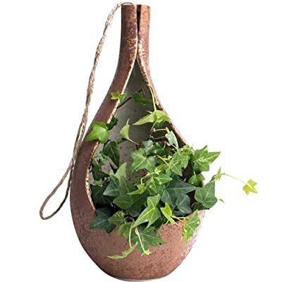 Simple Teardrop Shaped Hanging Planter and Clay Pot (Large): Garden & Outdoor