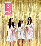 SOTEN 3 Pack Tinsel Fringe Curtains for Party Decorations Backdrop Tinsel Curtains