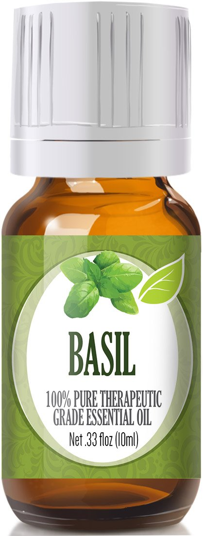 Basil 100% Pure, Best Therapeutic Grade Essential Oil - 10ml