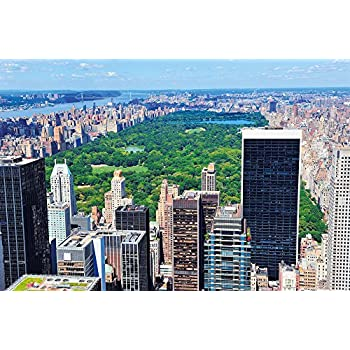 new york central park photo wall paper manhattan mural xxl poster central park. Black Bedroom Furniture Sets. Home Design Ideas