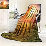 Digital Printing Blanket Arabians Grazing on Pasture at Sundown in Sunbeams Carpathians Ukraine Europe Green Summer Quilt Comforter