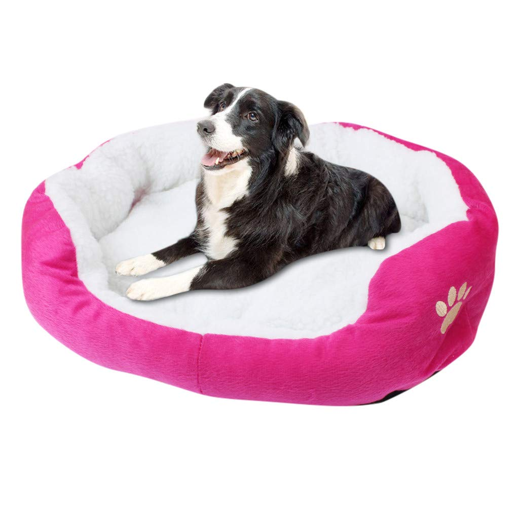Hisoul Pet Bed Fashion Cute Paw Print Pet Mat - Soft Fleece Plush Cozy Nest Mat Pad - Washable Breathable Bed for Small Dog/Cat Cold Winter (Hot Pink)