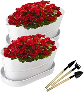 Oval Metal Planter Set of 2, with Trays, White Flower pots with Drainage Holes, Small Garden Tools and Storage Bag. Galvanized tubs Suitable for countertop herb Garden, Indoor Succulent Planter.