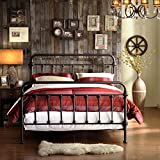 Metro Shop TRIBECCA HOME Giselle Antique Dark Bronze Graceful Lines Victorian Iron Metal Bed-Full