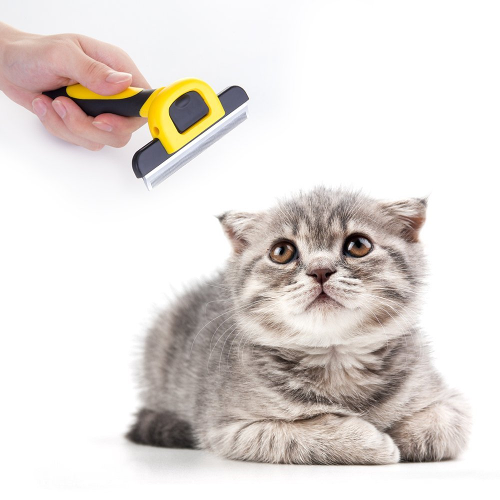 MIU COLOR-/® De aseo para animales y cepillo Etrille 4 para perro o gato