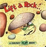 Lift A Rock Chunky Flap Book (Chunky Flap Books)