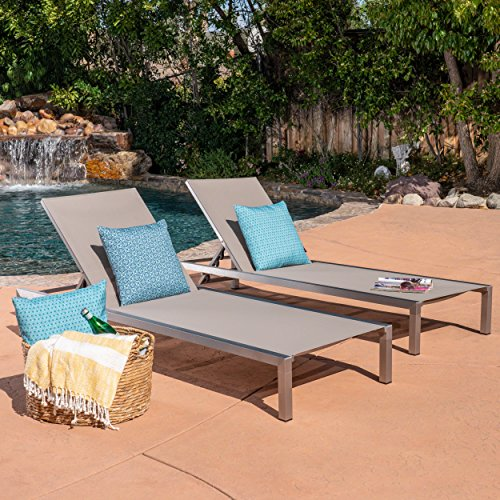 Fern Outdoor Grey Mesh Chaise Lounge with Silver Rust-Proof Aluminum Frame (Set of 2)