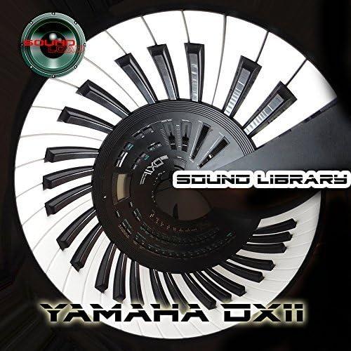 Yamaha dx-11 gran sonido Biblioteca y editores en CD: Amazon ...