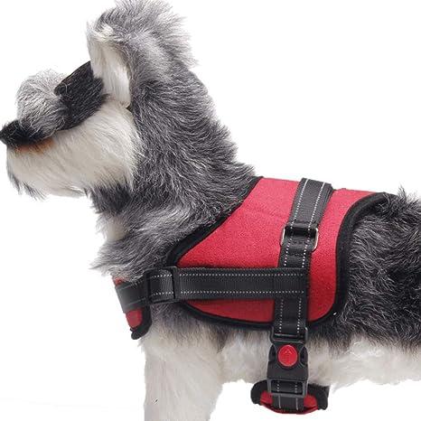 Arneses tipo chaleco para perros Chaleco acolchado para el cuerpo ...