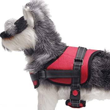 Gulunmun Arneses Tipo Chaleco para Perros Pet Basic Step-in Arnés ...