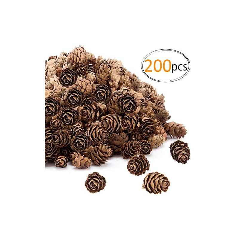 silk flower arrangements apipi 200pcs thanksgiving rustic mini brown pine cones in bulk - christmas natural pine cones ornaments for home decoration ,fall and christmas crafts