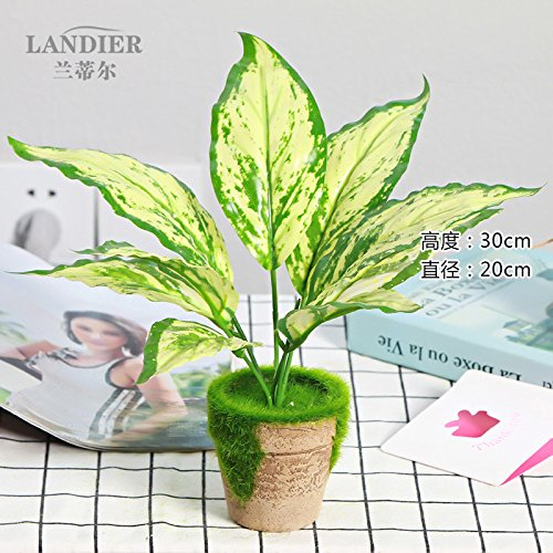 LANJIE Small Potted Plants And Flowers Bonsai Tree Simulation Green Basket Desktop Mini Ornaments Decorations Flowers Inserted Suit [Aquamarine Blue] Suit ()
