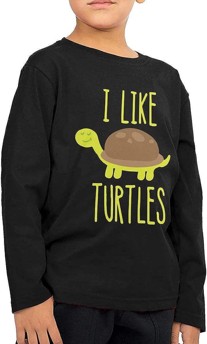 Vy32jg-2 Long Sleeve I Like Turtles T-Shirts for Children Kawaii Tunic Tops 2T-6T