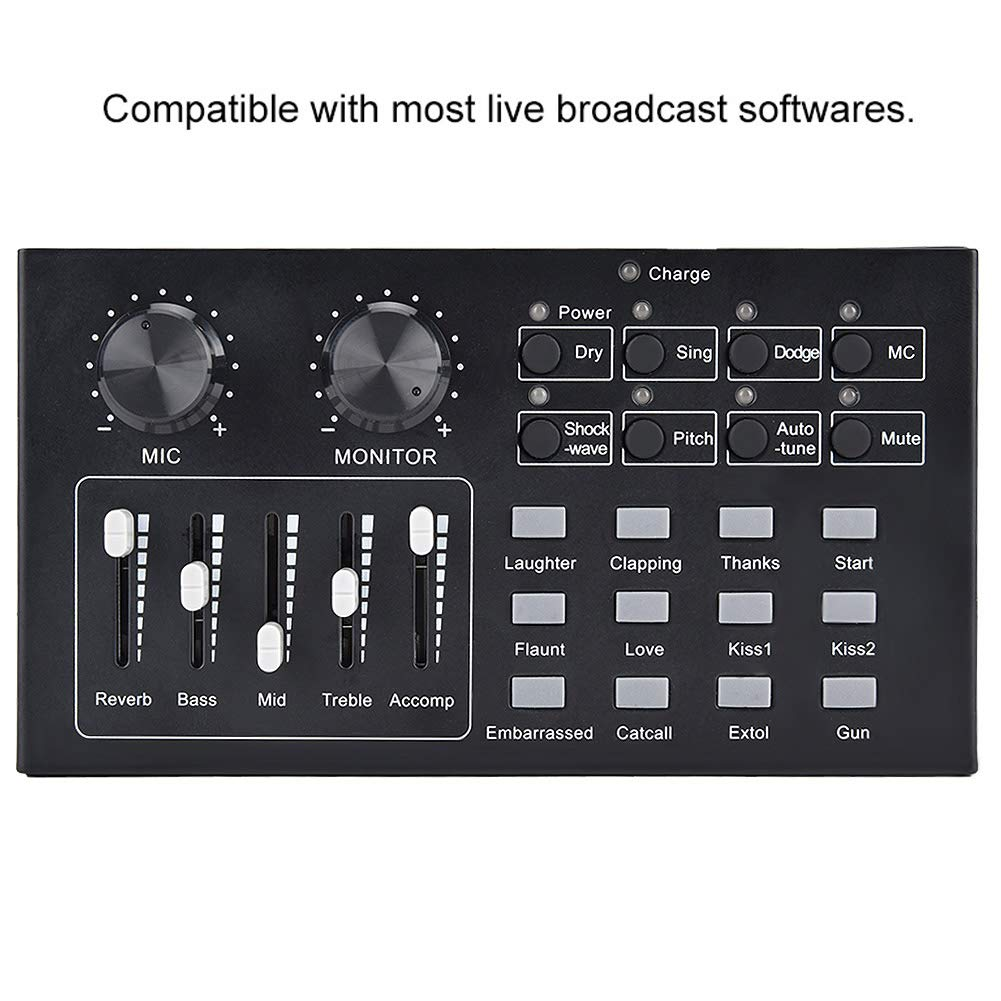 Wendry Multifunctional Live Sound Card Audio Mixer External Home KTV Professional Audio Mixer for Live Recording External Audio Sound Card Voice Chat