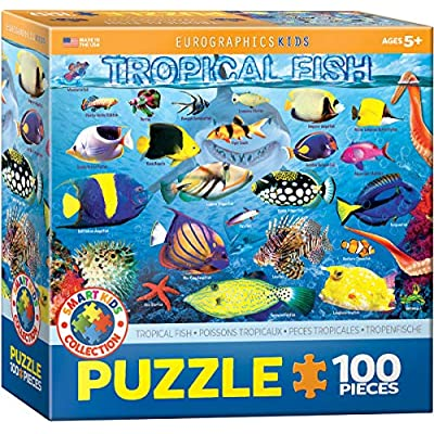 Tropical Fish 100Piece Puzzle: Toys & Games