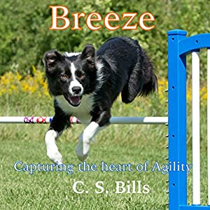 Breeze Audiobook