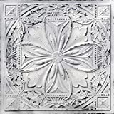 From Plain To Beautiful In Hours DCT10obw-24x24-25 Milan Ceiling Tile Old Black White 25