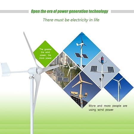 205297c0376 Aerogenerador TOPQSC Generador de Turbina Eólica 1000W DC 48V Generador de  Viento con Alta Eficacia 3 Hojas Turbina de Viento con la Vida de 10 años  (1000W ...