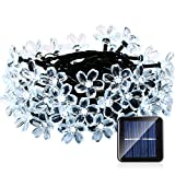 Qedertek Solar String Lights, 21ft 50 LED Fairy Flower Blossom Lights for Outdoor, Home, Lawn, Garden, Patio, Party and Holiday Decorations (Cool White)