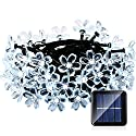 Qedertek Fairy Blossom Flower Solar String Lights, 21ft 50 LED Christmas Lights for Indoor and Outdoor, Home, Lawn, Garden, Wedding, Patio, Party and Holiday Decorations (Cool White)
