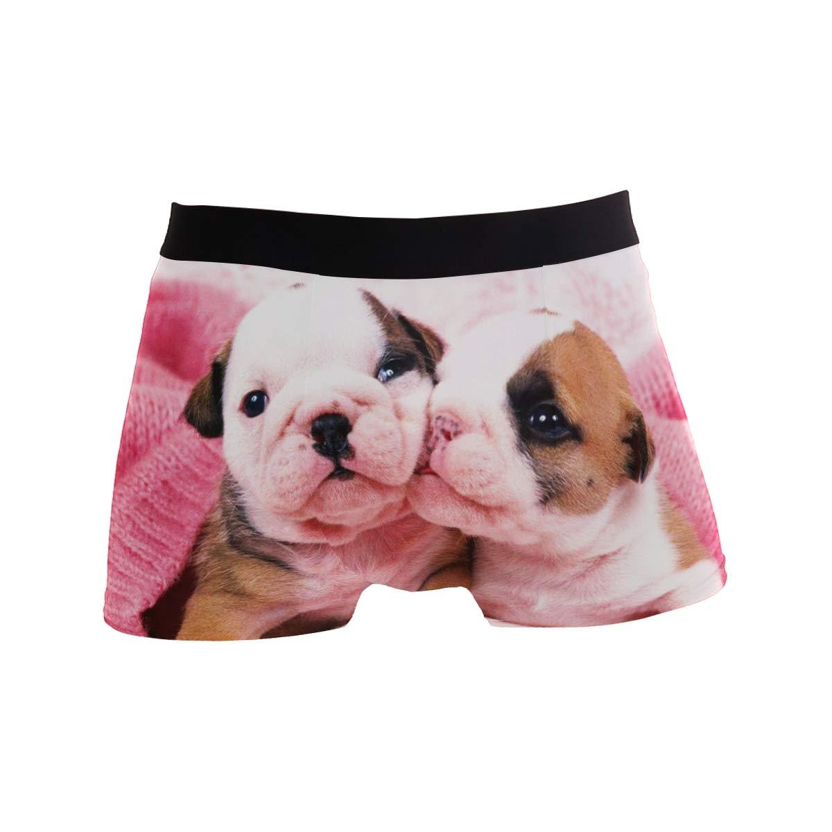 CATSDER Maxresdefault Boxer Briefs Mens Underwear Pack Seamless Comfort Soft