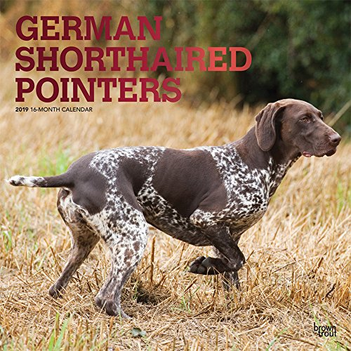 German Shorthaired Pointers 2019 12 x 12 Inch Monthly Square Wall Calendar with Foil Stamped Cover, Animals Dog Breeds (Multilingual Edition)