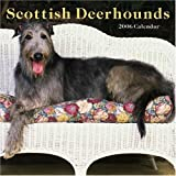 Scottish Deerhounds 2006 Wall Calendar
