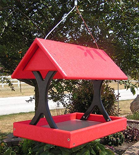 DutchCrafters Amish Poly Hanging Fly-Through Bird Feeder Made in America (Main Image - Bright Red & Black)
